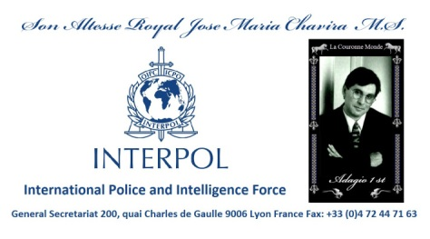 interpol-international-police-and-intelligence-force-1